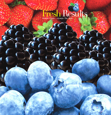 Fresh Results brochure